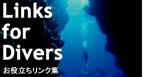 LIink for Divers